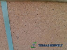Terrassenplatten 1B DIE BELGISCHE LACHS GEFL. 60/40/4 CM