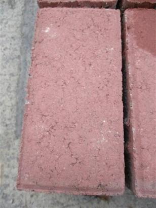 Pflastersteine CALVODRAIN ROT 20/10/6 CM OHS
